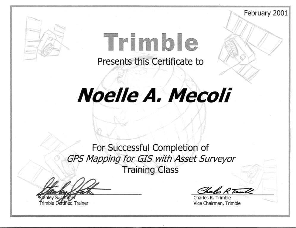 Profile Noelle A Mecoli Gisp